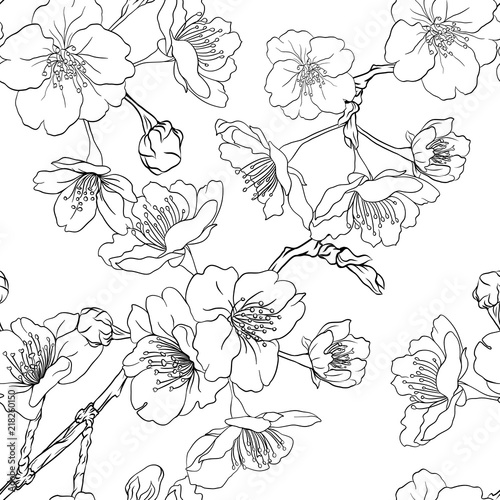 Seamless pattern, background with blooming cherry japanese sakura. Stock vectorillustration. Outline drawing.