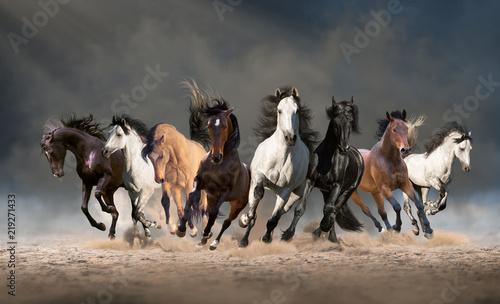 Stado koni biegnie naprzód na piasku w pyle na tle nieba