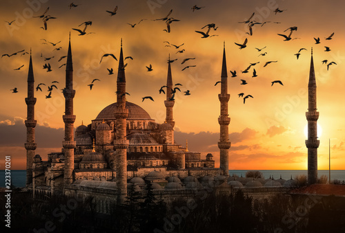 The Blue Mosque in Istanbul during sunset with seagulls flying around