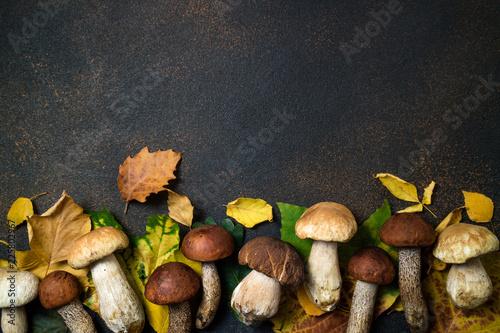 Jesienna kompozycja. Pieczarki Borowik i Jesień liści tło. Jesienny nastrój. Widok z góry, miejsce