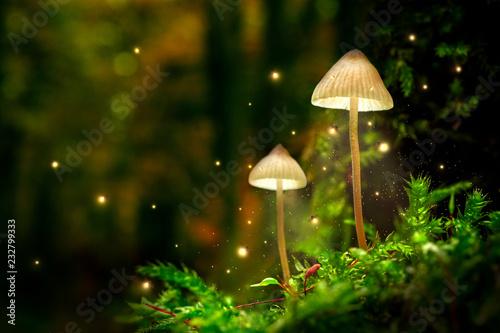 Świecące lampy grzybowe z świetlikami w magicznym lesie