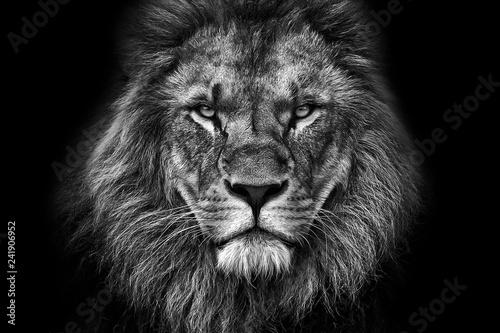 King face BW