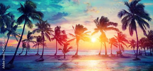 Sylwetki palmy na tropikalnej plaży o zachodzie słońca - nowoczesne kolory Vintage