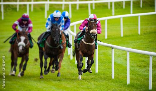 Zobacz galopujące konie wyścigowe i dżokejów ścigających się po torze