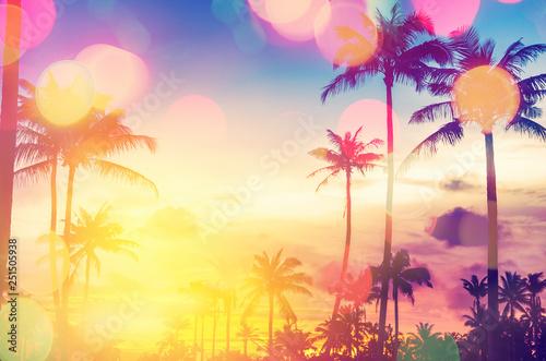 Tropikalny drzewko palmowe z kolorowym bokeh słońca światłem na zmierzchu nieba chmury abstrakta tle.