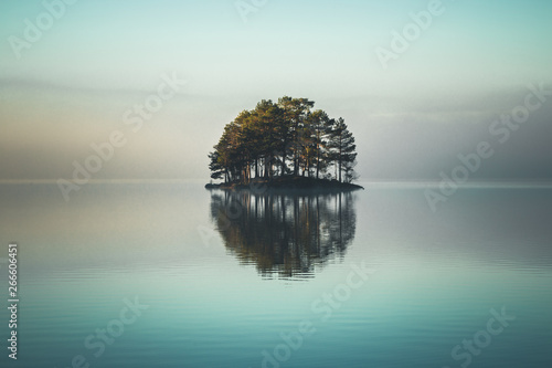 Tiny island covered by forest on the lake.