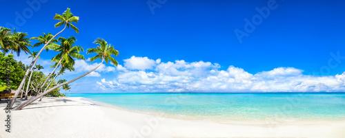 Piękna tropikalna wyspa z palmami i panorama plaży jako obraz tła