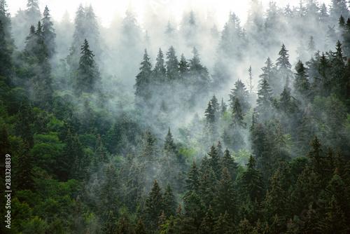 Mglisty krajobraz górski