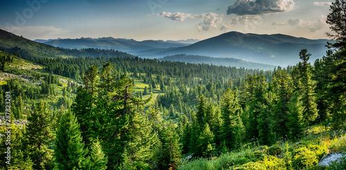 Piękny widok na zachód słońca w lesie cedrowym przed pasmem górskim sayan, park narodowy Ergaki, region Krasnojarski, Syberia, Rosja