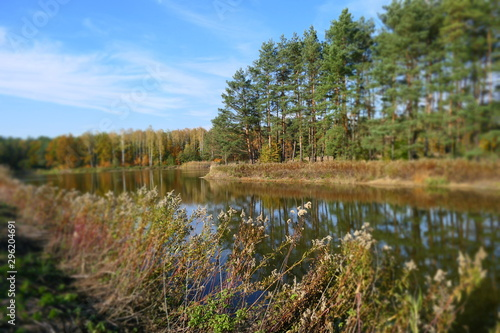 Jesienny pejzaż nad jeziorem w lesie