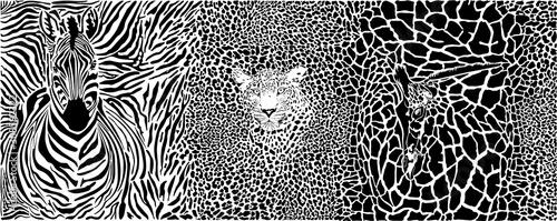 Background with zebra, leopard and giraffe