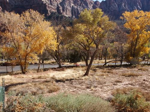Jesienny górski pejzaż