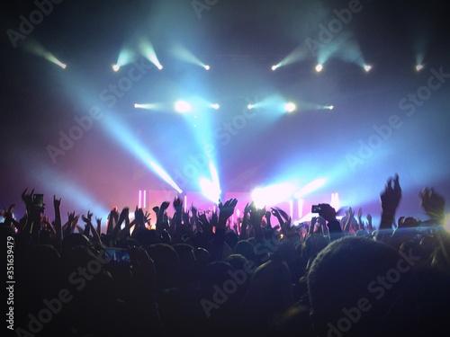 Crown Cheering In Music Concert