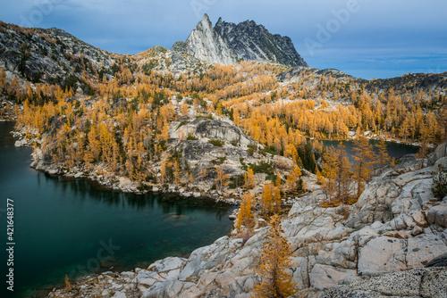 USA, Washington State. Alpine Lakes Wilderness. Golden larch trees and Prusik peak.