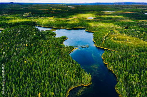Aerial view of green forests and blue lakes and rivers in summer Finland