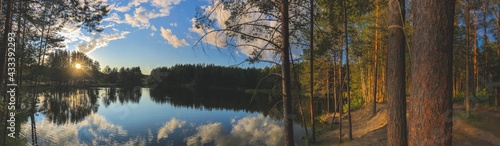 photography panorama view background beautiful forest lake at sunset surrounded by tall pine trees in hot weather, nature of russia, mari-el