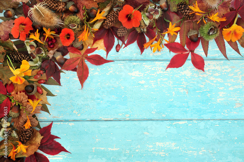 Autumn harvest abundance concept with European flora and fauna Natural Fall and Thanksgiving background border on rustic blue wood. Abstract nature composition for Harvest festival.