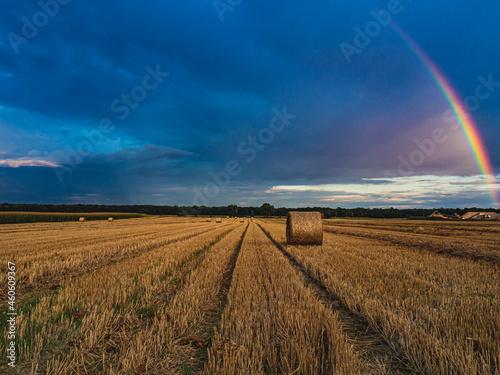 dolnośląskie pola