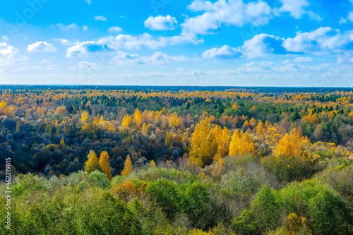 Autumn colored taiga forest, coniferous spruce, yellow foliage, top view. Panoramic aerial view. Bright autumn landscape.