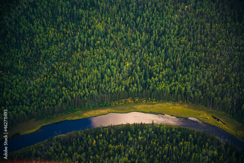 view from a height of taiga with a river