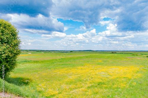 biebrza biebrzański park narodowy rzeka potok strumień rzeczka łąka pole pola pastwisko rolnictwo wieś podlasie podlaskie suwalszczyzna