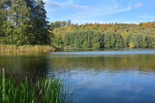 Jesienny pejzaż nad jeziorem